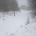 Zima, sníh