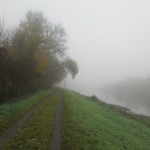 Inverze, mlha